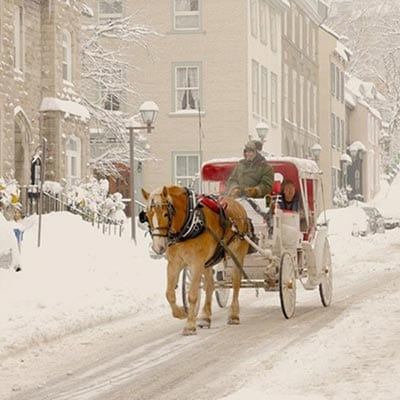 Carriage, Quebec city